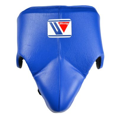 Winning CPS-500 Standard Foul Protector - Blue